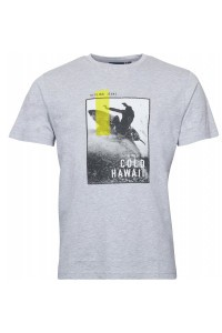 Replika Jeans T-Shirt - Cold Hawaii Grey